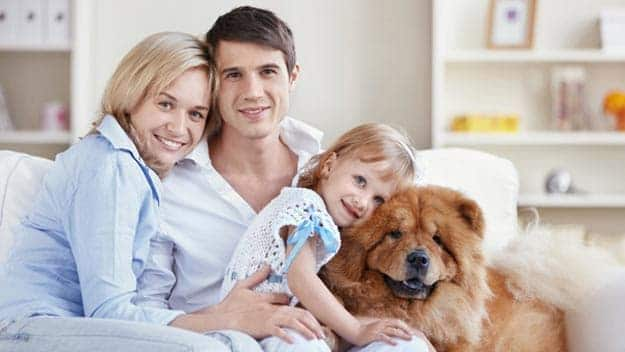 Wills & Trusts dog-young-family Direct Wills Leyton